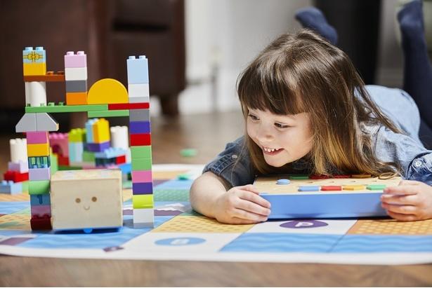 アナログな木製玩具でプログラミングが学べます