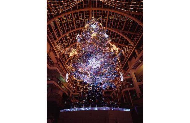 高さ15mの幻想的なツリーと、全館合わせて15万個のイルミネーションが札幌のクリスマスを演出