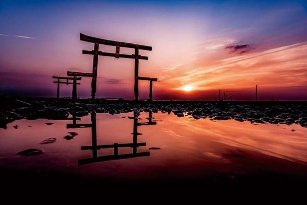 干潮の時にだけ出合える佐賀の海中鳥居を見に行こう|ウォーカープラス
