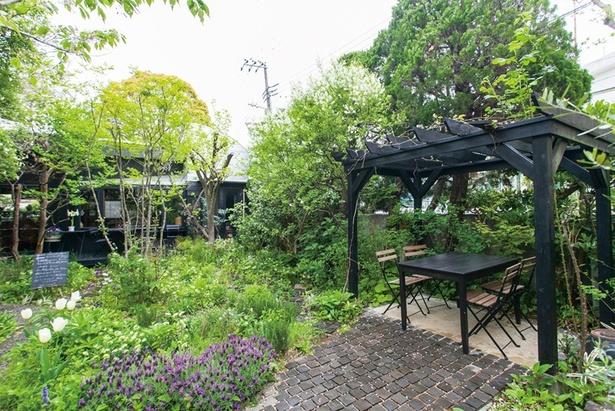 「cafe kaeru」にある全6席のテラスはワンちゃん連れもOK。庭園には店主が集めたカエルの置物もあるので探してみては?