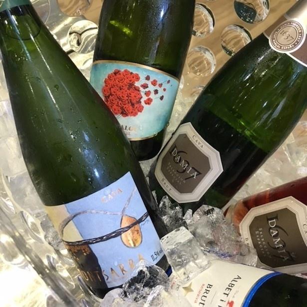世界各国のスパークリングワインを堪能!
