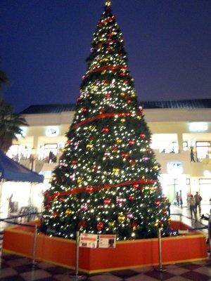 三重県下最大級のクリスマスツリーがお目見え!