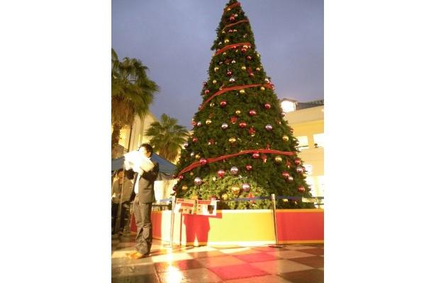 点灯セレモニーの様子&横から見るツリー