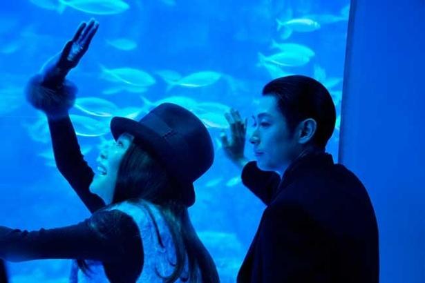 横浜・八景島シーパラダイスでは、萬田久子演じる謎の女・柊泰江と水族館に訪れるシーンを撮影