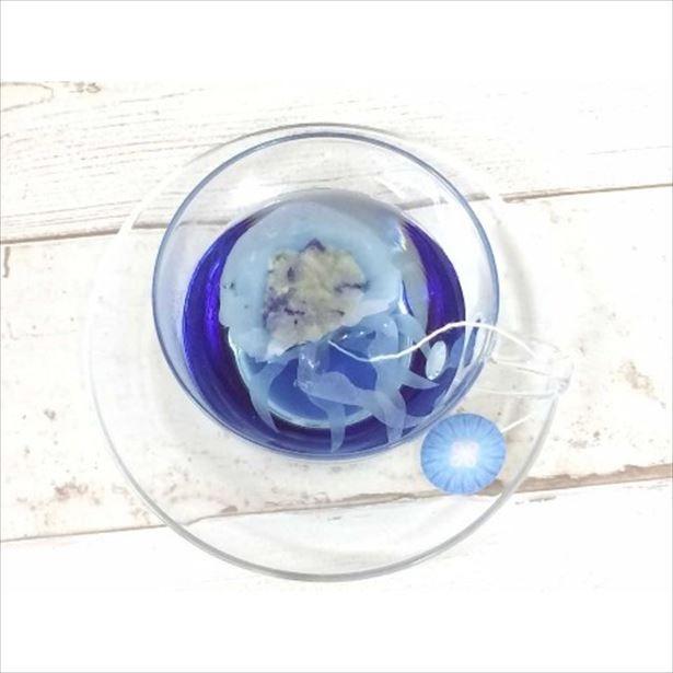 青い紅茶が楽しめる「クラゲのティーバッグ」(1820円)