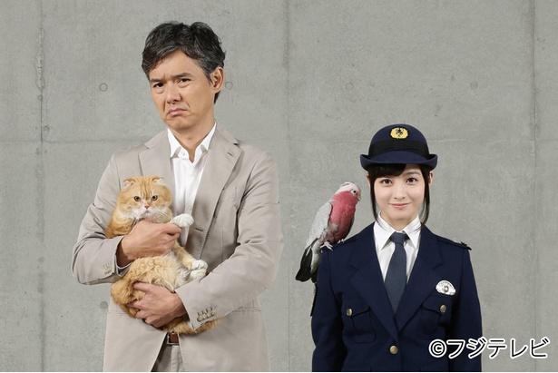 敏腕刑事と動物マニアの新人巡査が動物の知識から事件を解決する「警視庁いきもの係」(写真左から渡部篤郎、橋本環奈)