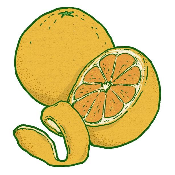 リラックス作用と気分を適度に高揚させるオレンジ