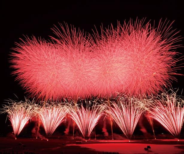 江戸川河川敷で大迫力の花火を楽しめる
