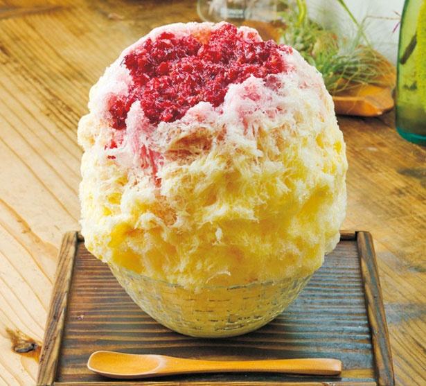 「チェリーカスタードかき氷」(800円)/COCOO cafe