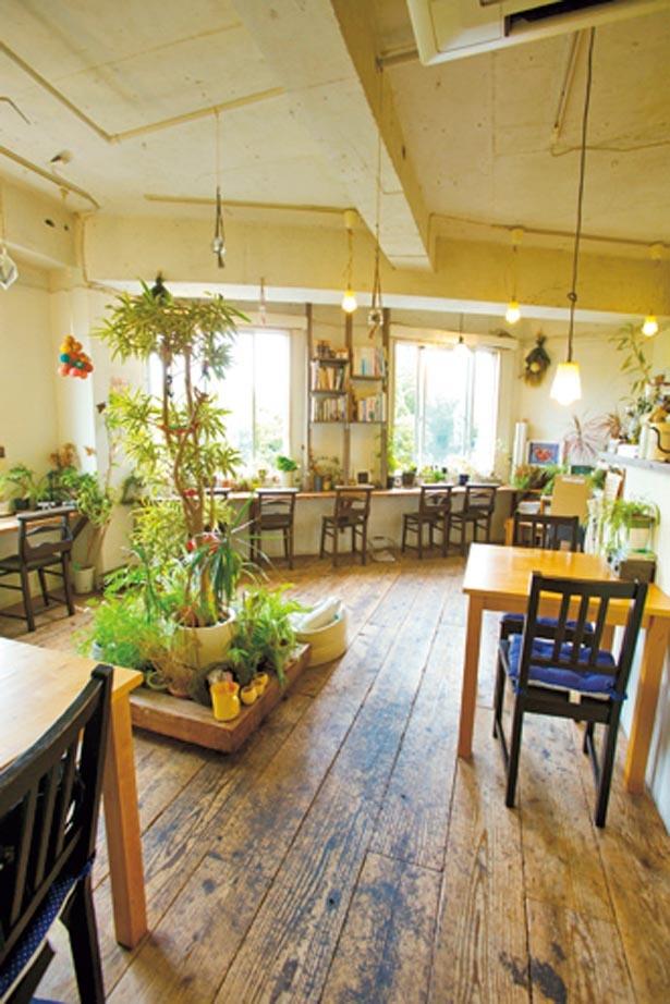 店の窓からは靱公園の緑が見渡せ、穏やかな時間が過ごせる/COCOO cafe