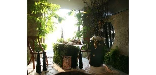 """アーティスト石原和幸氏が表現する""""緑の扉""""コーナー!59階「天空の庭 星のなる木」に設置"""