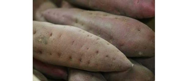 祈祷済みのサツマイモは10kg以上用意されているのだとか