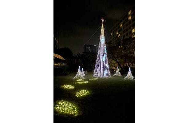 「癒しの森〜幸せが降るクリスマス」がテーマのグランドプリンスホテル高輪、新高輪、ザ・プリンス さくらタワー東京。イルミの見ているだけでホッとできる