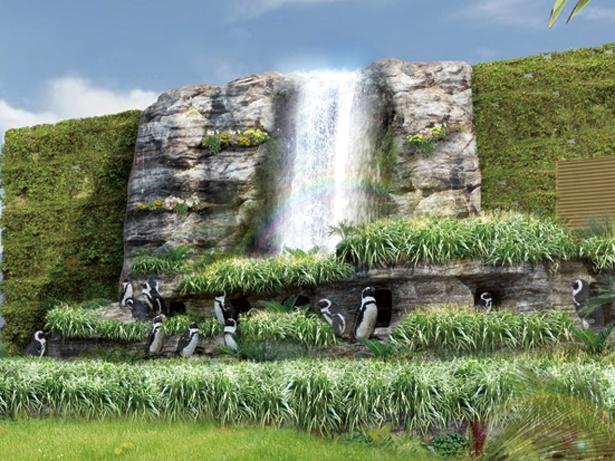 【写真を見る】ケープペンギンの本来の暮らしが垣間見えるサンシャイン水族館の「草原のペンギン」