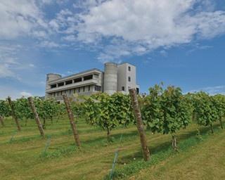 池田ワイン城は池田町町営のワイナリー。ワインの熟成室と瓶詰工場が見学できるほか、ワインづくりの歴史がわかるコーナーや試飲も。