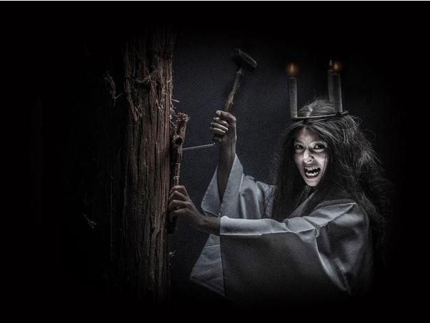 俳優が怨霊を演じる丑の刻参りがテーマの「史上最恐のお化け屋敷」
