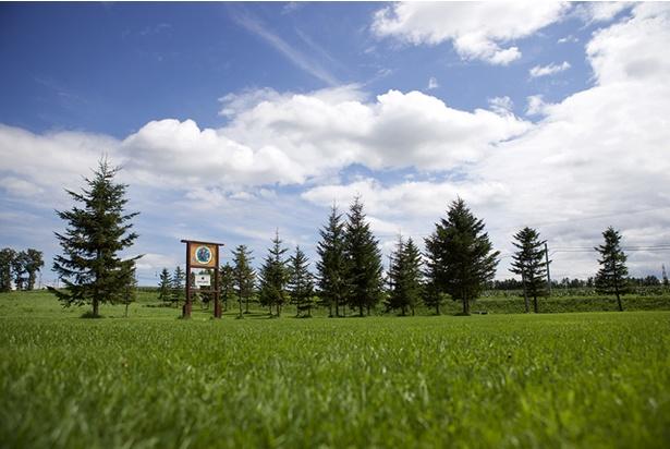 スノーピーク社公認の1日3組限定のキャンプフィールドでスローキャンプも!