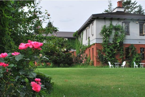 約10種類のつるバラがホテルの周りに咲く。7月中旬が見ごろ。