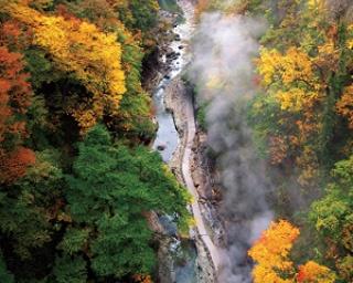 皆瀬川上流に広がる高さ60ⅿ、約8kmに及ぶ小安峡の紅葉は10月後半頃が見ごろ