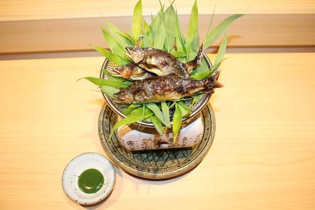 「神谷 名古屋」のアユの塩焼き