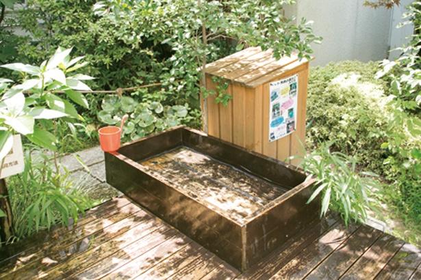 「筑後川温泉 ふくせんか」のペット用温泉(一匹540円※犬・猫専用)。売店では各種ワンちゃんグッズも販売する