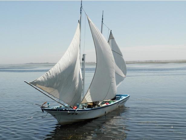 打瀬船。野付半島でのホッカイシマエビ漁は、今でも、三角帆の打瀬舟による伝統漁法が行われています(漁期は夏と秋頃)