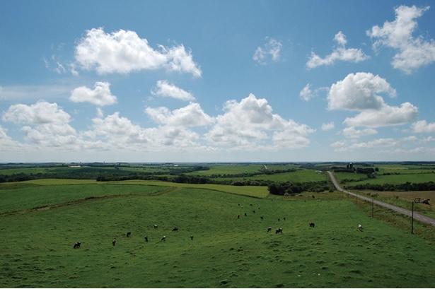高さ10mの展望台に登ると、眼前には広大な緑の牧草地と酪農村ならではの風景が広がり、その圧倒的スケールに酪農王国の息吹を感じられます。