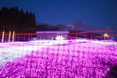 白とピンクのLEDの光が織り成す「光の花畑」