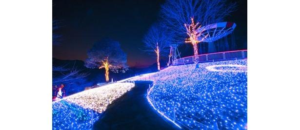 ブルーを基調としたLEDで傾斜を彩る「光の海」