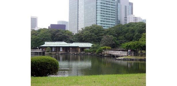 浜離宮恩賜庭園の中央に位置する「中島のお茶室」