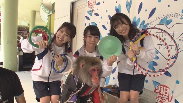 SKE48の熊崎晴香、高畑結希、荒井優希が猿回しに挑戦!(写真左から)