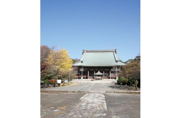 「遊行寺」の寺の前がコースになっている。観戦後に初詣を!