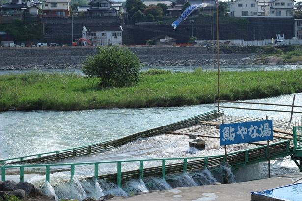 「日田鮎やな場」は、竹製の「やな」で、川を下るアユを捕る伝統漁法「鮎やな」を実施する施設