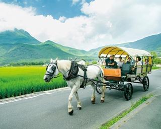 """【大分へ行こう!】温泉以外も充実!人気観光地・由布院の""""新たな魅力""""を探す旅へ"""