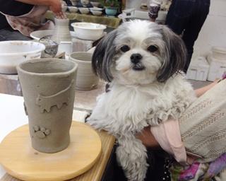 【大分へ行こう!】愛犬と一緒にあこがれの温泉地へ!のんびり由布院さんぽ