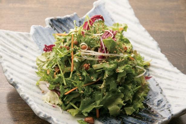 【写真を見る】「パクチーサラダ」(980円)。ゴマ油のタレが美味な必食メニュー/劉家厨房