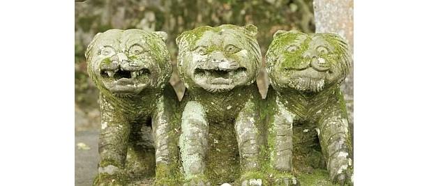 聖徳太子の石像付近にいる「招福三寅」