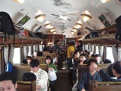 野生動物が多く生息する釧路湿原を走る列車/SL冬の湿原号