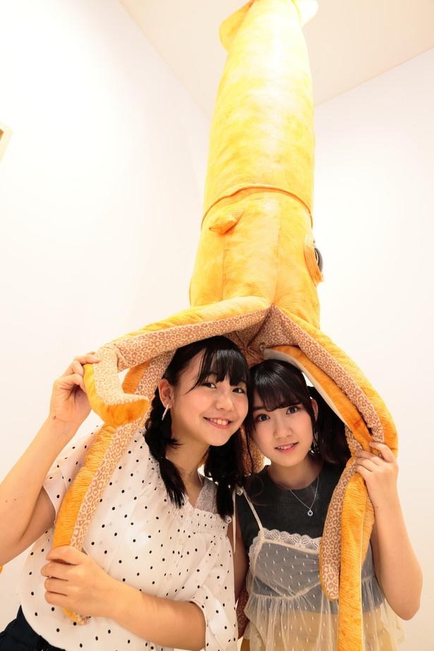 【写真を見る】数量限定で販売している超特大ダイオウイカのぬいぐるみ(3万4800円)