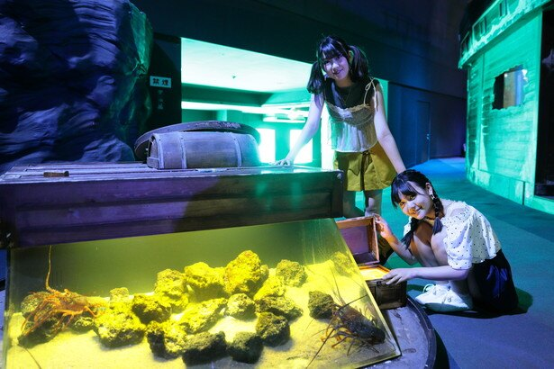 【SKE48】上村亜柚香ちゃん応援スレ★2【チームS】©2ch.netYouTube動画>9本 ->画像>334枚