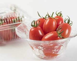 フルーツのように高い糖度が魅力の「アイコトマト」