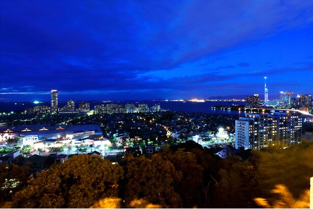 小高い境内から輝く福岡タワーや市街地を望む