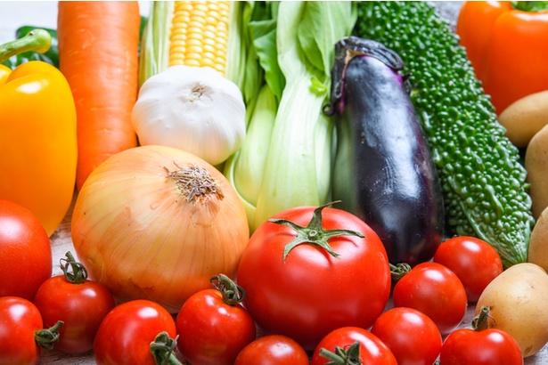 8月下旬は多くの野菜の出荷量が安定しています