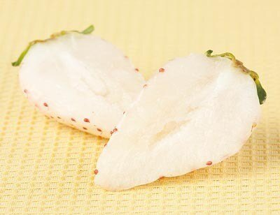 """""""白いいちご""""「初恋の香り(R)」は中まで果肉が真っ白!【そのほかブランドいちごメニューはコチラ】"""