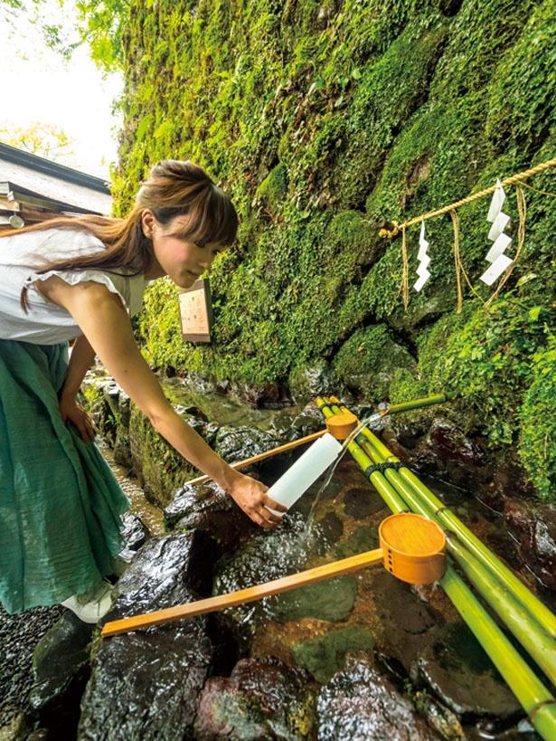 石垣から湧き出るご神水は無料でくめる。オリジナルの「ご神水容器」(300円)もあり/貴船神社