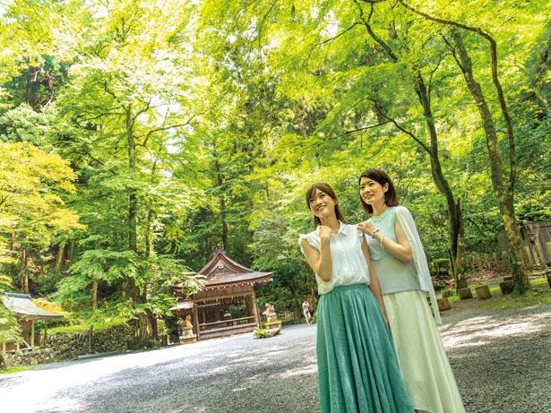 朱塗りの神門から奥宮に入ると、鬱蒼(うっそう)とした木々に囲まれ、荘厳な雰囲気が漂う/貴船神社