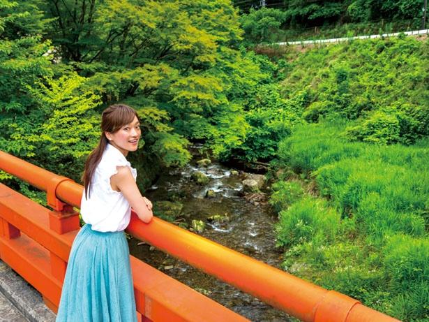 梶取社の北側にかかる梶取橋からは、豊かな自然や川の流れを眺められる/梶取社