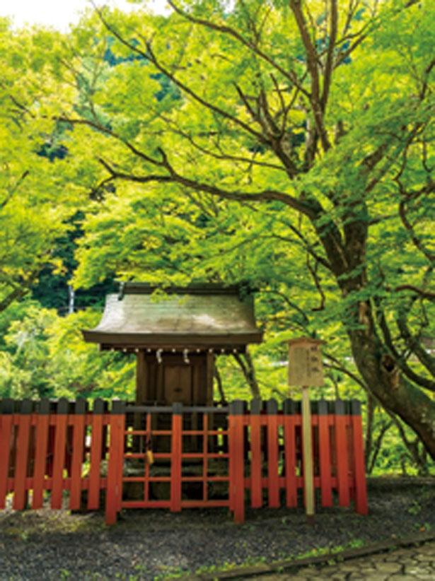 貴船神社の一の鳥居のそばにある小さな社/梶取社