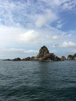 笹川流れクルージングで見られる、数々の奇岩のひとつ