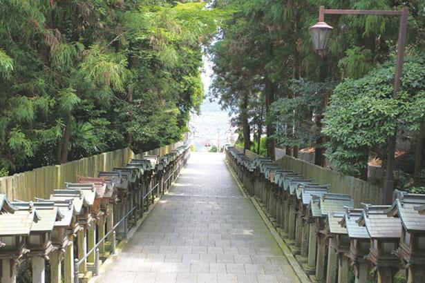 宝山寺の表参道は一の鳥居をくぐると、灯籠が並ぶ石畳の先に、生駒の町並みが現れる/宝山寺